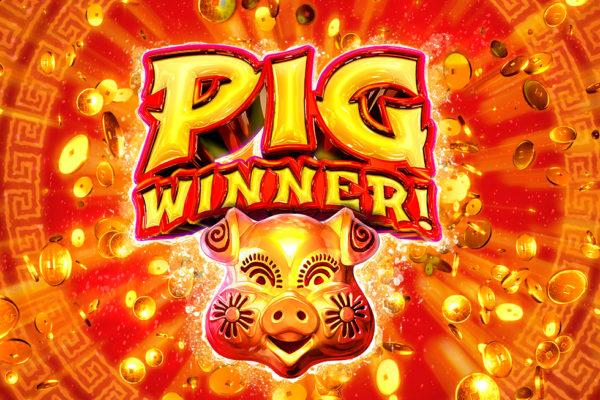 """Be a """"Pig"""" Winner in 2019"""